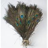 SKL - Juego de 100 plumas de pavo real (tamaño de 25,4 a 30,5cm)