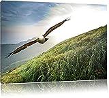 Majestic Bald Eagle, formato: 120x80 su tela, XXL enormi immagini completamente Pagina con la barella, stampa d'arte sul murale con telaio, più economico di pittura o un dipinto a olio, non un manifesto o un banner,