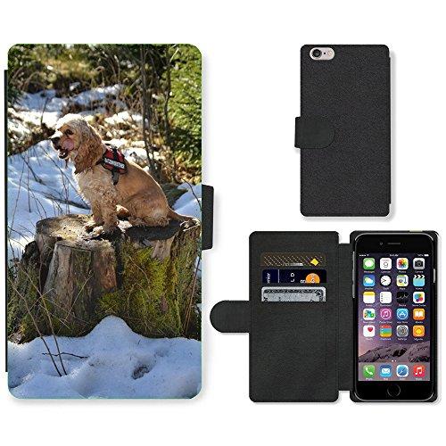 Just Mobile pour Hot Style Téléphone portable étui portefeuille en cuir PU avec fente pour carte//m00139379American cocker Épagneul Cocker Sweet//Apple iPhone 6Plus 14cm