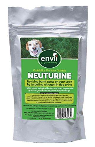 envii-neuturine-behandelt-gras-das-von-hundeurin-beschaedigt-wurde-verbrannter-rasen-grasbehandlung-