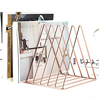 AIYoo Heavy Duty Metal Triangle Organizer Rack Rose Gold,9 Slot Newspaper Magazine Holder Document File Stand Journals Book Rack for Office, Living Room Study Decorative Storage Rack