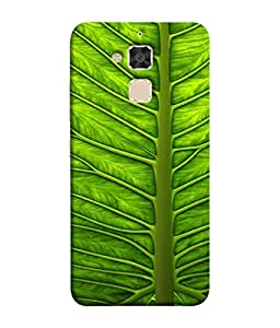 PrintVisa Designer Back Case Cover for Asus Zenfone 3 Max ZC520TL (5.2 Inches) (Great Pic For Nature Lover)
