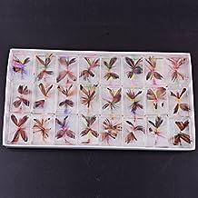 Aorace 48pcs/lot mariposa moscas secas mojado mosca pesca señuelos Kits moscas secas fijar moscas flotantes ganchos para la pesca de trucha de salmón baja ganchos surtido surtido con caja de mosca