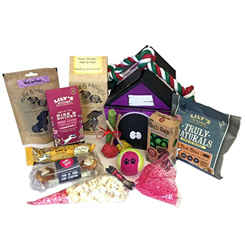 Treat Hamper for Small Dog