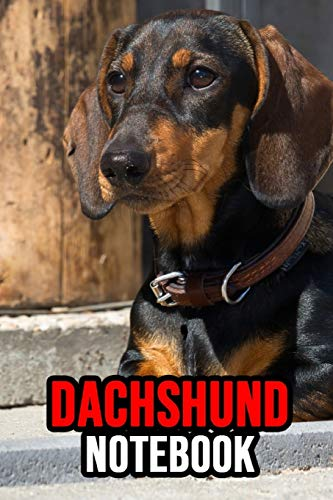 Dachshund Notebook: Journal / Diary / Notepad, Gifts For Dog Lovers (Lined, 6