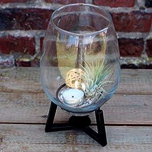 Glasmanufaktur Mitienda Vase aus Glas mit Metallgestell 23cm H, Geschenkidee, Tischvase Blumenvase Weihnachten