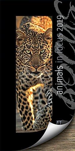 Animals in Focus 2019, Wandkalender mit Passepartouts zum Wegklappen im Hochformat (33x66 cm) - Tierkalender mit Monatskalendarium