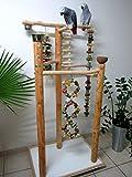 Kletterbaum für Vögel, Freisitz für Papageien, Papageienspielzeug, 3 Säulen Freisitz, Rotbuchenholz,165 cm