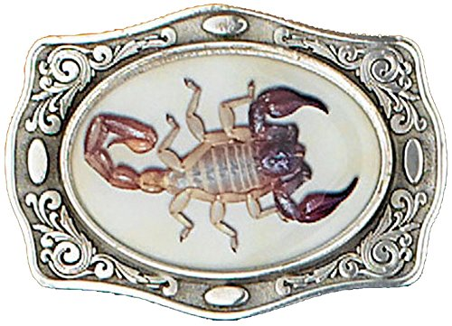 Sunrise Outlet Silver Tone Belt Buckle with Scorpion Detail