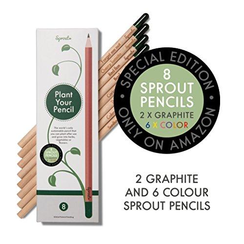 Sprout Buntstifte Set | 8er Pack | Zeichenstifte aus unbehandeltem Bio Holz| Stifte zum Einpflanzen