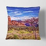 BIG Box Art weiß Rückseite Sedona Arizona Landschaft USA Kissen werfen Kissen, Mehrfarbig, 43x 43cm
