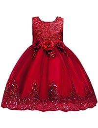 Vestito Frozen Bambina e Ragazze Abito Principessa Vestito da Cerimonia per  la Damigella Floreale Abito Lungo 645e0f037e4