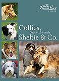 Collies, Sheltie & Co.