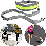 Homdox Hands Free Dog Training Leash Elastic Dog Leash Reflective Adjuatable Waist Belt With Bottle Holder Waist Bags for Running