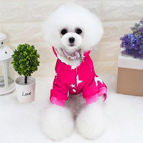 smalllee _ Lucky _ store Star Muster Haustier Kleidung für Hunde Hund Sweatshirt Kalten Wetter Fell Pet Jumpsuit mit Kapuze Katze Outfits Chihuahua Kleidung Warm (Spiderman Erwachsene Outfits Für)
