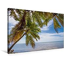 Premium Textil-Leinwand 75 cm x 50 cm quer, Palmenmeer | Wandbild, Bild auf Keilrahmen, Fertigbild auf echter Leinwand, Leinwanddruck: Idyllischer Strandurlaub (CALVENDO Orte)