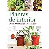Plantas de interior. Guía básica de cuidados.