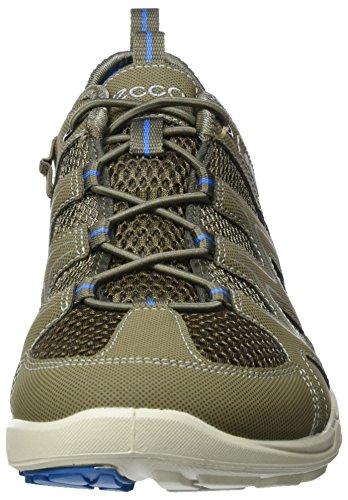ECCO Terracruise, Scarpe Sportive Outdoor Uomo Verde (58438Warm Grey/Dark Clay/Dynasty)