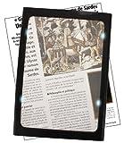 Wellys R 087592 Standlupe mit Licht Vergrößerung, 23 x 16.5 cm, 3-fach, schwarz