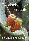 Exotische Früchte an Baum und Strauch (Tischkalender 2017 DIN A5 hoch): Tropisches Obst fotografiert wie es wächst an der Pflanze (Planer, 14 Seiten ) (CALVENDO Natur)