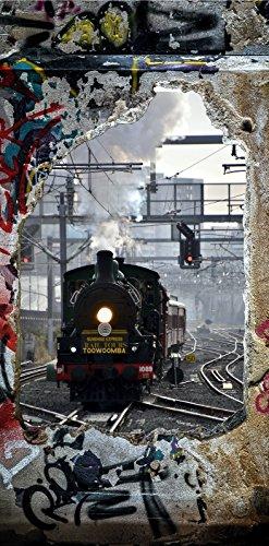 Türposter 87x200cm Lokomotive Türaufkleber Möbelfolie Toowoomba Sunshine Express 1007tp
