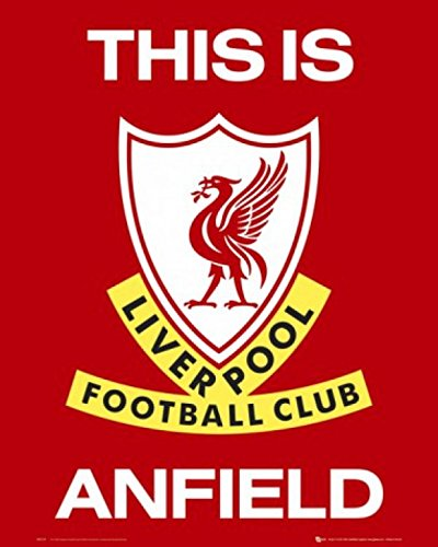 Posters: Football Mini Poster - Liverpool F.C., This Is Anfield, Blason (50 x 40 cm)
