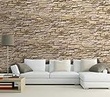 Dalinda Papier peint imitation mur de vieilles pierres 420 x 270 cm