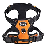 Best Front Range No-pull Dog Harnesses - EXPAWLORER Best Front Range No-Pull Dog Harness. Reflective Review