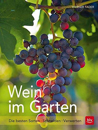 Wein im Garten: Die besten Sorten - Schneiden - Verwerten