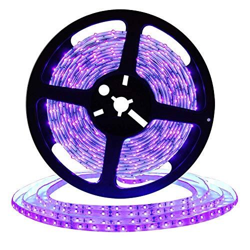 DeepDream UV Schwarzlicht Led Streifen 10M mit 12V 4A Netzteil/32.8ft 2835 SMD IP65 Wasserdicht 600 Stück, UV LED Strip LichtBand Leiste Band[Energieklasse A+] - Violet Wand Beleuchtung