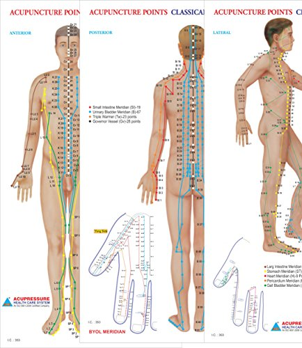 Acupuncture Points Chart - Meridians - Set of 3