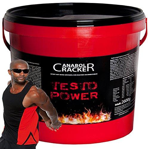 Testo Power, Whey Protein Creatin, 2600g Dose, Frucht Eiweißpulver + hochwertiges Muskel T-Shirt, Achselshirt (Shirt S)