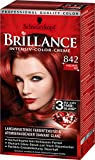 Brillance Intensiv-Color-Creme 842 Kaschmirrot, 3er Pack (3 x 143 ml)