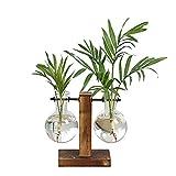 Ysoom Vaso di Vetro Flora, Desktop in Vetro Vaso Vaso in Vetro Vasi di Diverse Misure con Retro Solid Legno Supporto Idrocoltura Piante Home Giardino Matrimonio Decorazione 3