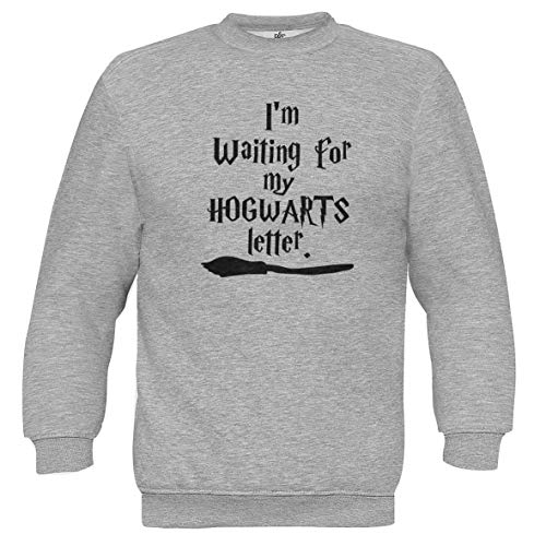 I\'m Waiting for My Hogwarts Letter Harry Potter Style Logo Grau Unisex Pullover L