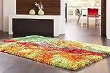 Hochflor Langflor Teppich Amalfi Bunt in 4 Größen