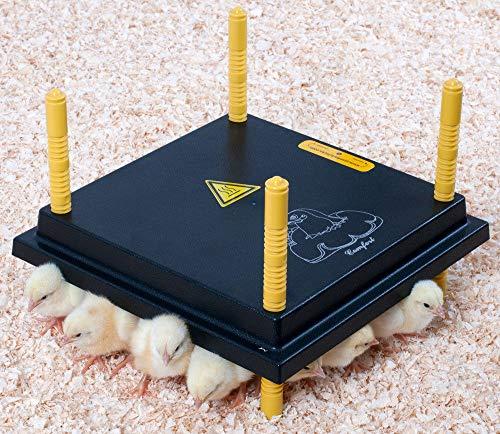 Küken-Wärmeplatte Comfort 25x25cm - 15 Watt, Heizplatte, Heizmatte, Kükenwärmer, Heizkabel, Inkubator, Kunstglucke, Wärmebirne