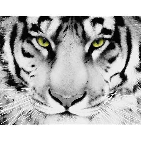 Tela, motivo: tigre bianca 66,04 x 20 cm x 50,80 (26