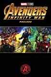 Marvel's Avengers Infinity War Prelude