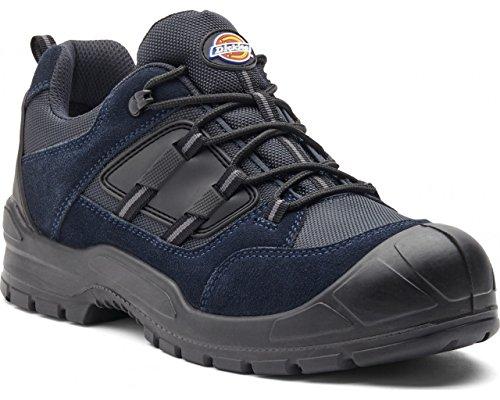 Dickies Everyday sicurezza scarpe da uomo in acciaio anti Scuff toe tacco Navy/Black