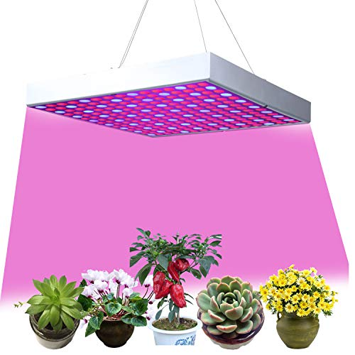 15W LED Pflanzenleuchte Pflanzenlampe Pflanzenlichter Zimmerpflanzen Wachstumslampe Grow Lampe 225 LEDs Rot&Blau für Pflanzen Blumen und Gemüse Tageslicht (15)