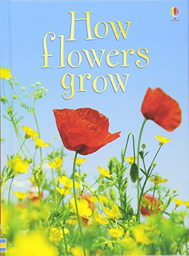 How Flowers Grow (Beginners Series)