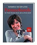 Partnerhunde - So finden Sie den Hund, der zu Ihnen passt
