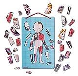 Janod-Bodymagnet-juego-de-anatoma-magntico-J05491