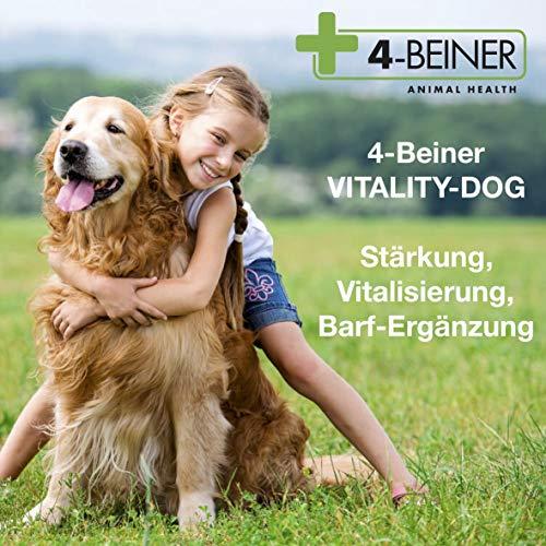 4-Beiner Vitality-Dog, 12 Multi Vitamine für Hunde, Vitamin B Komplex, Vitamin A, C, E, D, Folsäure, Biotin Plus Mineralstoffe Zink, Eisen, Mangan etc, auch ideal beim BARFEN,