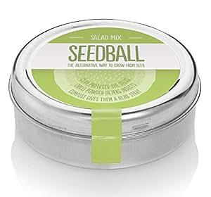Salatmischung-Samenbälle – Gutes aus dem eigenen Küchengarten: Rucola, Griechische Kresse, Grünkohl, Roter Senf & Grüner Senf – 600 Samen pro Dose