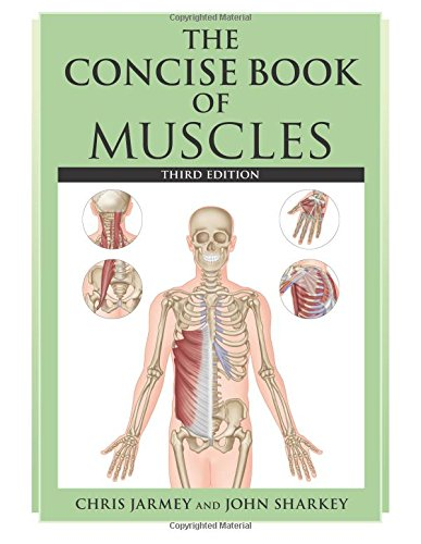 The Concise Book of Muscles por Chris Jarmey