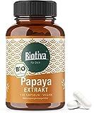 Papaya Extrakt Bio Kapseln hochdosiert - 120 Kapseln - Proteolytische Aktivität - Papain - abgefüllt in Deutschland