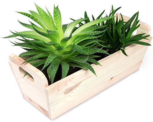 Fioriera con manici - legno pino naturale ca. 35 x 15 x 13 cm - portaoggetti personalizzabile - laublust