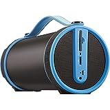 Imperial BEATSMAN Mobiler Bluetooth Lautsprecher mit UKW Radio (2.1 Lautsprecher, Bluetooth 2.1, UKW Radio, MicroSD Kartenleser) (Zertifiziert und Generalüberholt), Farbe:Blau